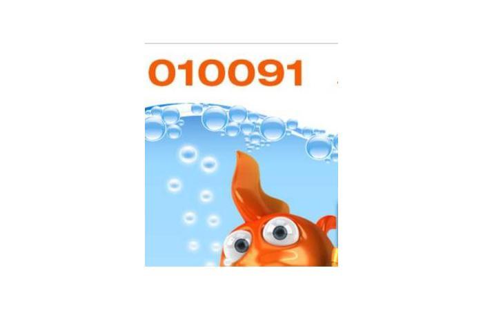 010091 - Abzocke durch Call-by-Call-Anbieter