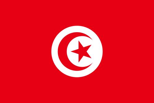 Handy Vorwahl  Tunesien